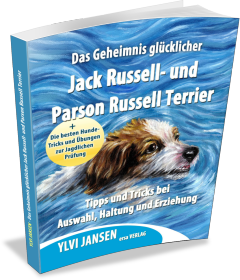 Jack Russell und Parson Russell Terrier